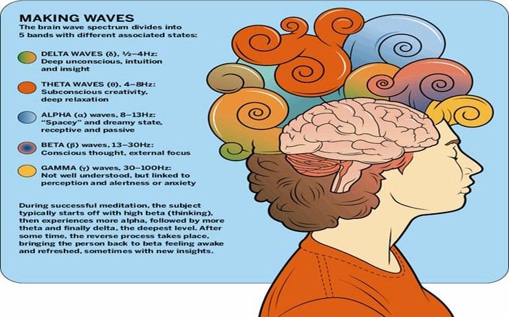 mindfulness hersenen